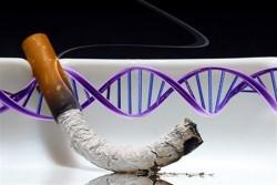 Επιγενετικές αλλαγές προκαλεί το κάπνισμα