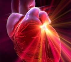 «Βιολογικός» βηματοδότης ρυθμίζει τον καρδιακό παλμό