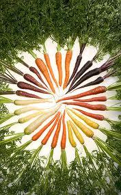 carotenoeidh