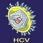 hpatitida c