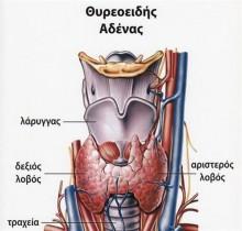 uyroeidhs adena