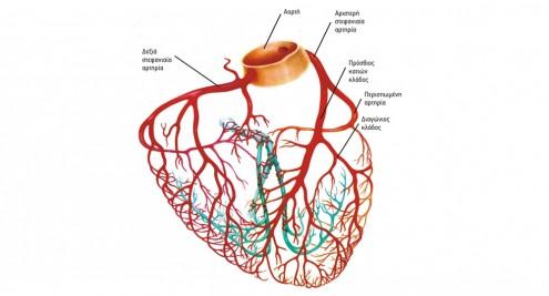 arthries kardias