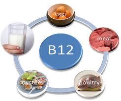 vitaminh b12
