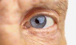viagra retina 4