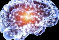 brain 4 parkinson 4