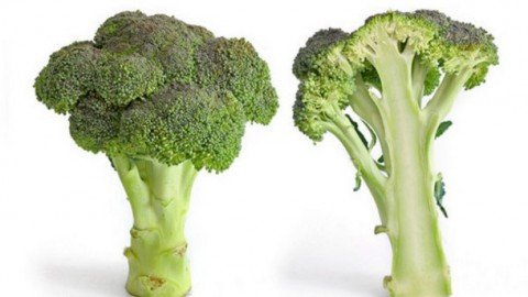 Functional-broccoli-5555555may-lower-cholesterol_strict_xxl