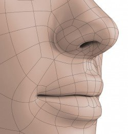 Isolated Polygonal lips and nose