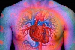 heart-sckardia55ing-300x200