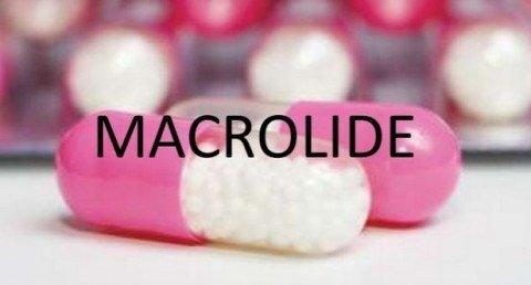 macrotd55lides