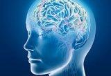 brain.m55555edium