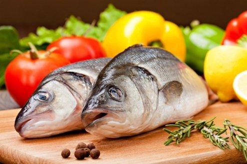 fish555