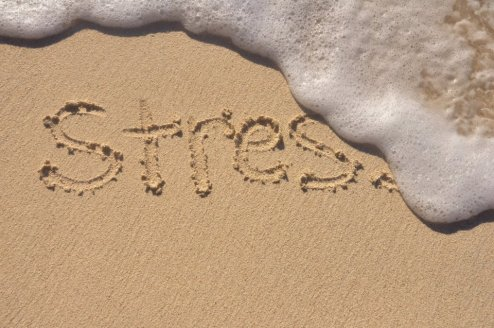 stres 6