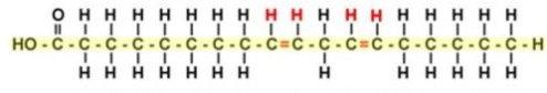 cis linoleic 6
