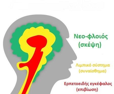 3-triune-brain66