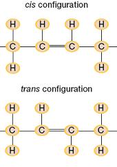 trans-6