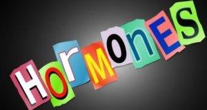 ormones6